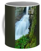 Waterfall - High Water On Falls Brook Coffee Mug