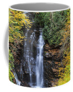 Waterfall In Autumn Coffee Mug