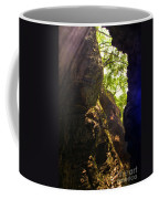 Waterfall Mountain Coffee Mug