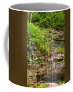 Waterfall On The Way To Thurmond Coffee Mug