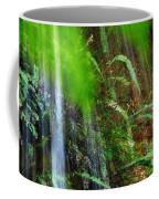 Waterfall Over Ferns Coffee Mug