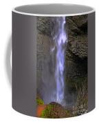 Waterfall Spray Coffee Mug