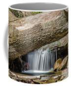 Waterfall Under Fallen Log Coffee Mug