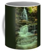 Waterfalling Through Ricketts Glen Coffee Mug