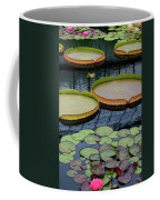 Waterlilies And Platters 2 Coffee Mug by Byron Varvarigos