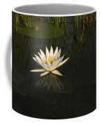 Waterlilly 5 Coffee Mug