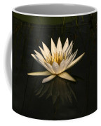 Waterlilly 6 Coffee Mug