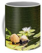 Waterlily And Coconuts Coffee Mug