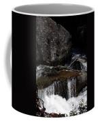 Water's Flow Coffee Mug