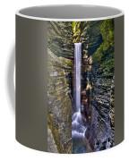Watkins Glen Cascade Coffee Mug