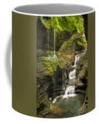 Watkins Glen Falls Coffee Mug by Anthony Sacco