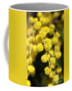 Wattle Flowers Australian Native Coffee Mug