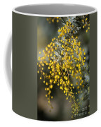 Wattle Flowers Coffee Mug