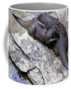 We Otter Snuggle Up Coffee Mug