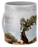 Weatherbeaten Juniper Coffee Mug