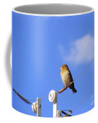 A Gazing Weaver Coffee Mug