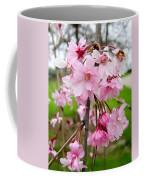 Weeping Cherry Blossoms Coffee Mug