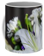 Weeping Lily Coffee Mug