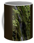 Weeping Rock Coffee Mug