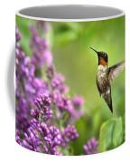 Welcome Home Hummingbird Coffee Mug