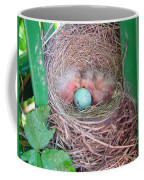 Welcome To The World - Hatching Baby Robin Coffee Mug