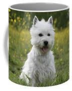 West Highland White Terrier Coffee Mug