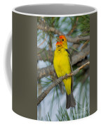 Western Tanager Singing Coffee Mug