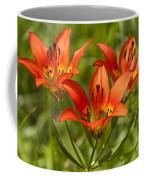 Western Wood Lily Coffee Mug