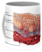 Wet Amd, Illustration Coffee Mug