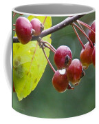 Wet Crab Apples Coffee Mug