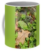Wet Leaves Coffee Mug