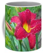Wet Red Razzmatazz Daylily 1 Coffee Mug
