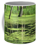 Wetland Reflection Coffee Mug