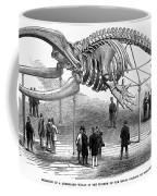 Whale Skeleton, 1866 Coffee Mug