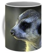 What A Face Coffee Mug