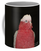 What Color Am I Supposed To Be Coffee Mug