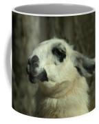 What So Funny Coffee Mug
