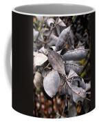 Still Life Within  Coffee Mug