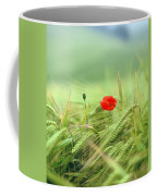 Wheatfield Poppy Coffee Mug
