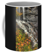 When Light And Water Falls-5a Blackwater Falls State Park Wv Autumn Mid-morning Coffee Mug