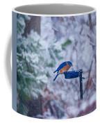 Where Did Spring Go Coffee Mug