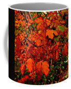 Where Has All The Red Gone - Autumn Leaves - Orange Coffee Mug