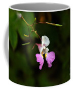 Where The Faerie Bonnets Come From Coffee Mug
