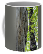 Where The Tree Meets The Stone Coffee Mug