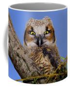 Where'd Ya Get Those Peepers Coffee Mug