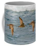Whimbrel Trio In Flight Coffee Mug