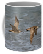 Whimbrels Flying Above Beach Coffee Mug