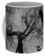 Silhouette Trees Coffee Mug
