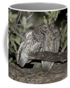 Whiskered Screech Owls Coffee Mug
