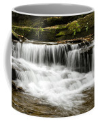 Whispering Waterfall Landscape Coffee Mug